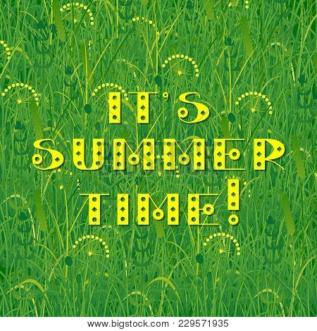 Background Of Grass. Text - Its Summer Time. Plants Meadows And Fields. Concept Summer, Nature, Fres