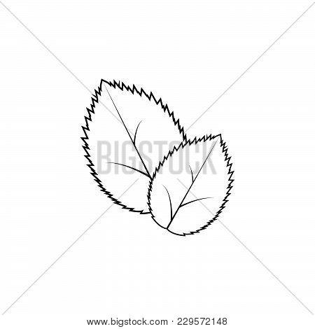 Leaf Line Icon, Vector Illustration. Black On White Background