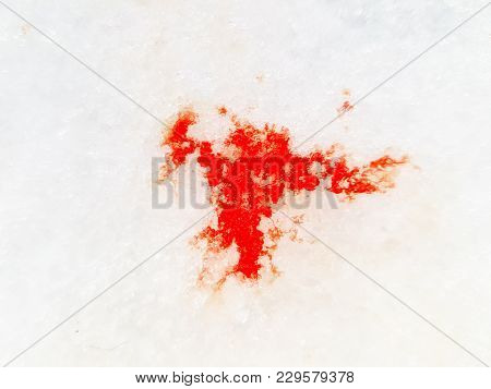 Wounded Animal Blood Trace On The Snow.