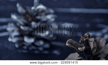 Composition Of Fir Cones On The Table.
