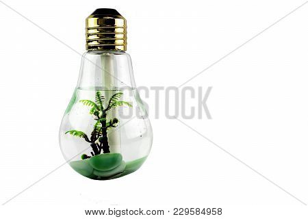 Humidifier In Bulb Shape With Decorate Tree And Stone Inside
