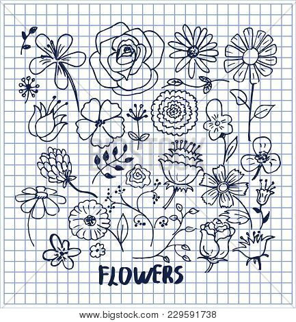 Set Of Hand Drawn Flowers Vector Illustration With Cute Black Sketches Of Roses Chamomiles Lilys Vio
