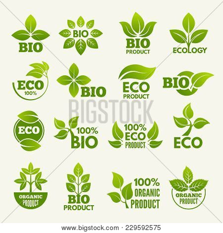 Organic Eco Logos And Labels With Illustrations Of Leaves. Vector Green Emblem Collection, Bio And E