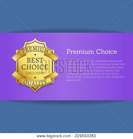 Premium Choice Best Exclusive Quality Stamp Label Isolated On Blue Background Vector Illustration, G