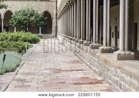 Barcelona,spain-june 22,2014: Cloister Of Monastery,monestir De Pedralbes,barcelona.