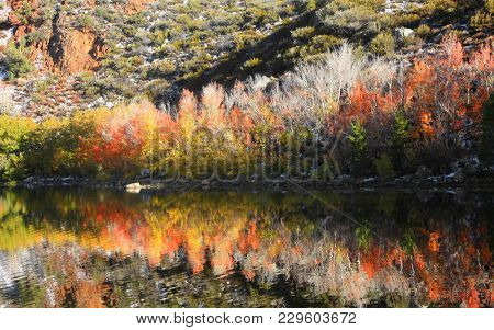 North lake in California ,Colorful tree reflections