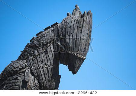 Trojan Horse Profile - Canakkale Square, Turkey