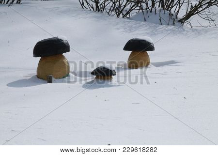 Wooden Mushroom Growth In Shine Crystal Snow In Sunny Winter Day