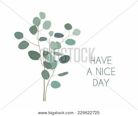 Have A Nice Day Greeting Card With Silver Dollar Eucalyptus Plant Branches. Hand Painted Eucalyptus
