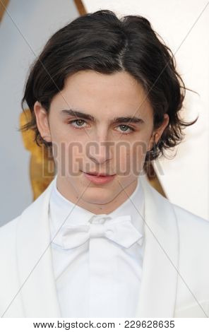Timothee Chalamet at the 90th Annual Academy Awards held at the Dolby Theatre in Hollywood, USA on March 4, 2018.