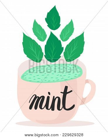 Coffee, Cup, Food, Illustration, Icon, Pattern, Tea, Drink, Abstract, Fruit, Green, Cafe, Set, Isola
