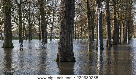 Flood In Deventer At The River Ijssel In Gelderland With The Flooded Park Worp.
