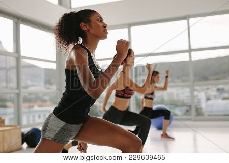 Females Working Out Together In The Health Studio