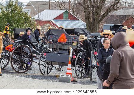 Amish At Bart Community Mud Sale