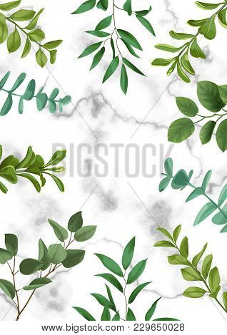 Floral Template With Herb And Bushes Branches With Leaves In Watercolor Stylization On Marble Backgr