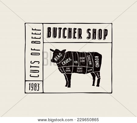 Stock Vector Beef Cuts Diagram In The Style Of Handmade Graphics.  Label Template For Butcher Shop.