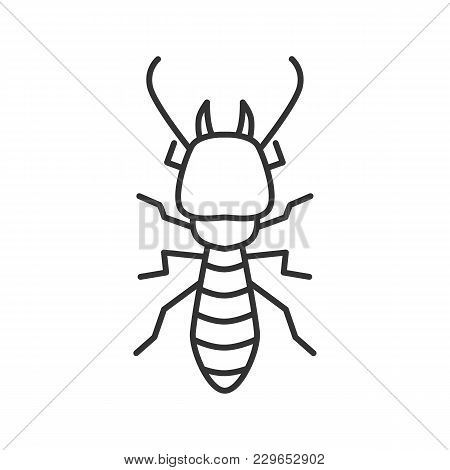 Termite Linear Icon. White Ant. Thin Line Illustration. Insect Pest. Contour Symbol. Vector Isolated