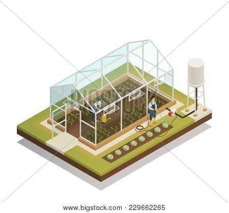 Greenhouse Cable-supported Irrigation Facilities Isometric Composition With Gardeners Watering Plant