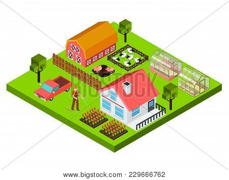Colorful Isometric Concept With Farmer Barn Cottage Cattle And Greenhouse 3d Vector Illustration