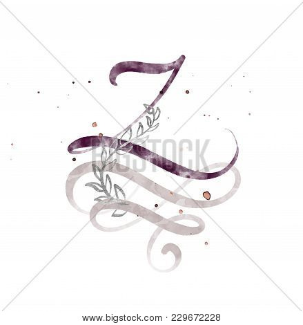 Hand Drawn Calligraphy Letter Z. Watercolor Script Font. Isolated Letters Written With Ink. Handwrit