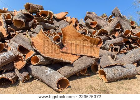 Heap Of Cork Tree Bark As Raw Commodity With Sky
