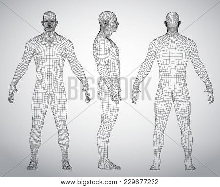 Wire Frame Human Full Body In Virtual Reality. Medical Blue Print Scanned 3d Model. Polygonal Techno