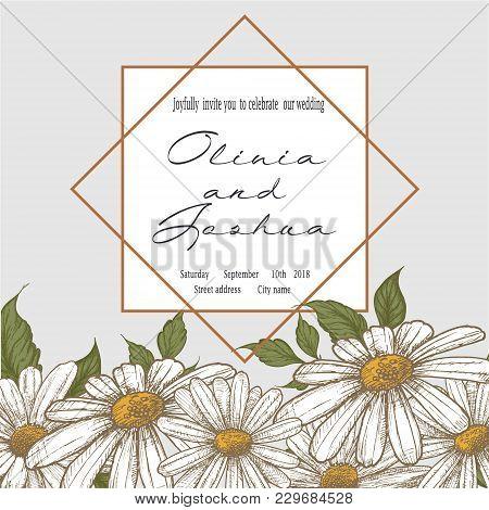 Wedding Invitation. Beautiful Blooming Flowers. Vintage Greeting Card. Frame. Drawing Engraving. Cha