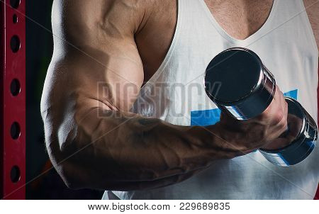Muscular Arms Doing Biceps With Dumbbells In The Gym