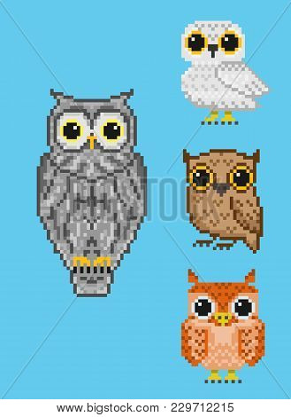A Set Of Four Pixel Owls. For Games And Mobile Applications.
