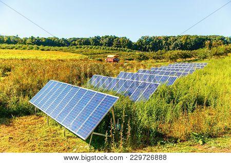 Solar Panels On The Farm. Solar System On The Corn Field