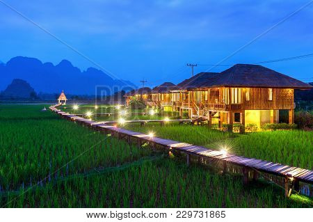 Wooden Path And Green Rice Field At Night In Vang Vieng, Laos.