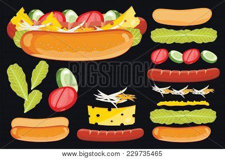Hot Dog Isolated . Igredients Set Of Hot Dog. Elements Of Fast Food Menu.