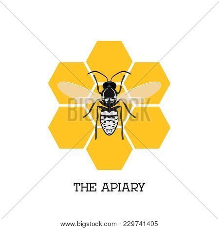 Apiary Concept With Bee And Honeycomb Isolated On White Background Illustration. Bee, Honey, Apiary