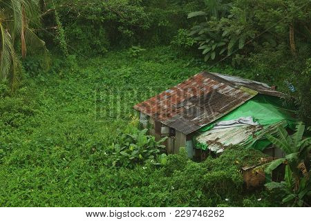 Old House Made By Rusty Zinc Sheets In The Middle Of Green Forest