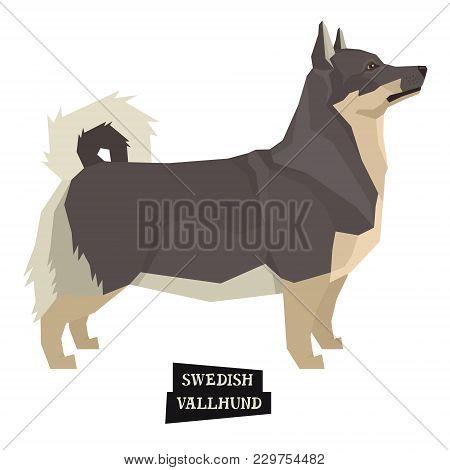 Dog Collection Swedish Vallhund Geometric Style Isolated Object Set