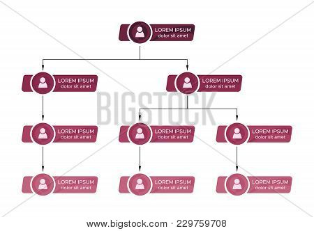 Colorful Business Structure Concept, Corporate Organization Chart Scheme With People Icons. Vector I