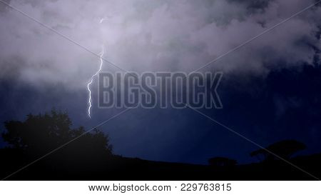Stroke Of Branched Lightning Shoots Out Of Cloud And Strikes The Trees Below, Stock Footage