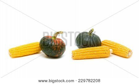 Corn Cobs And Pumpkin On White Background. Horizontal Photo.