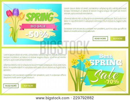 Best Discount 50 Off Advertisement Sticker Bouquet With Tulips And Daffodil Narcissus Bulbous On Web