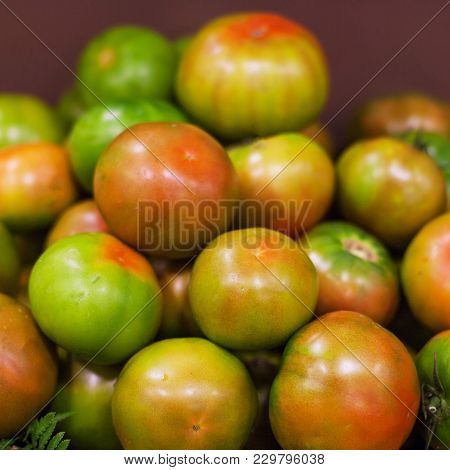Fresh Tomatoes  Background. Organic Ripe Various Tomatoes In Market. Harvesting Concept