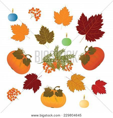 Set - Pumpkin, Bunch Of Ashberry, Autumn Leaves, Burning Candle - Isolated On White Background - Art