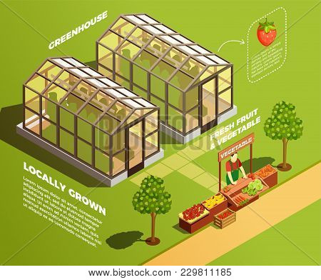 Isometric Farm Background With Two Glass Greenhouses For Locally Growing Organic Vegetables And Frui