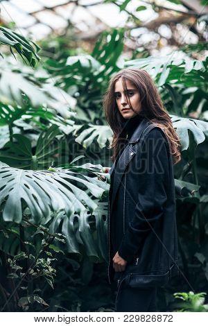 Stylish Beautiful Woman Posing On Nature Background