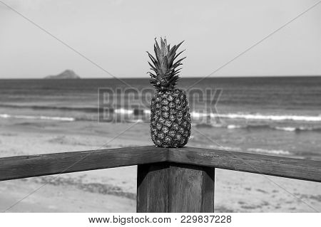 Pineapple On A Wooden Handrails With Mediterranean Sea On Its Background, B&w