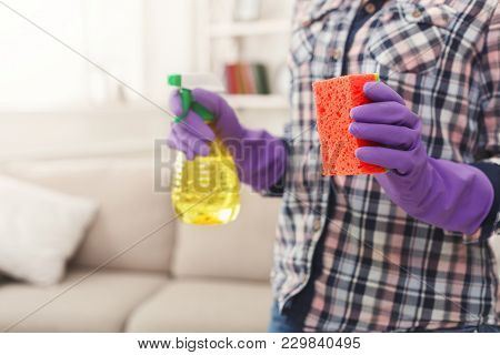 Unrecognizable Woman With Cleaning Equipment Ready To Clean House. Cropped Girl Holding Rag And Spra