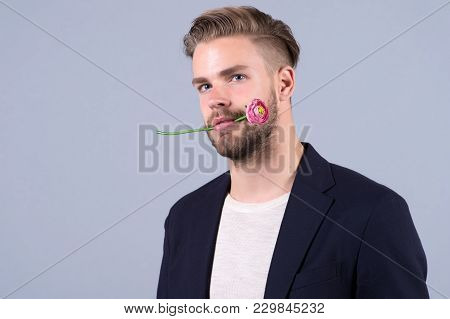 Man With Flower In Mouth, 8 March. Macho With Bearded Face, Hair In Jacket, Holiday. Womens Day, 8 M