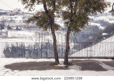 Winter View Of A Public Terrace Over The Hilly Region Of Langhe (in The Southern Area Of Piemonte Re