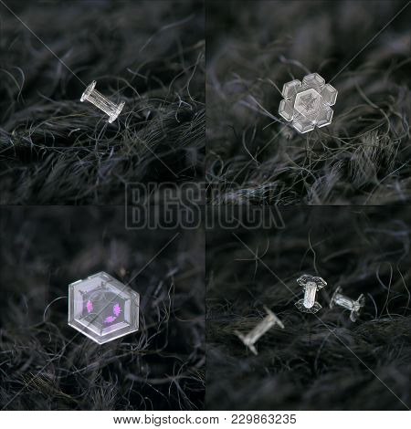 Set With Four Photos Of Real Snowflakes On Dark Textured Background: Small And Simple Snow Crystals