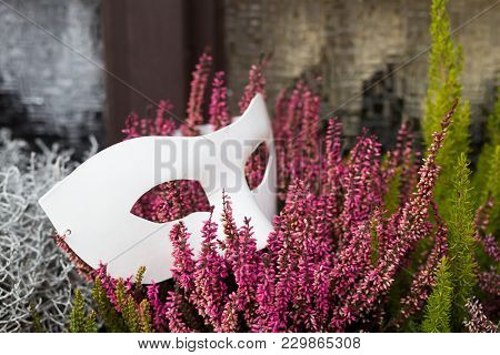 A Theater Mask Between Plants In Front Of A Window