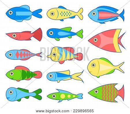 Set Of Fish. Bright Tropical Fish Isolated On White Background. Vector Illustration.